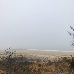 Super foggy day today at the Cape Henlopen State Parkhellip