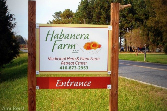 Habanera Farm White Haven MD Tea Herbal Remedies