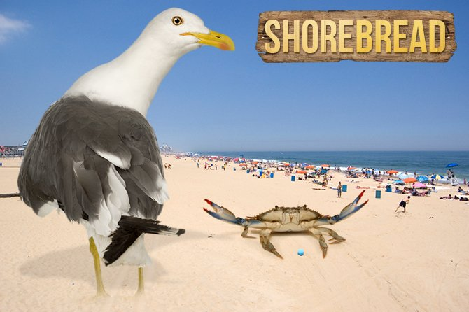 Default ShoreBread Photo