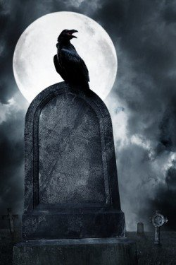 raven on grave with moon and fog_60761848
