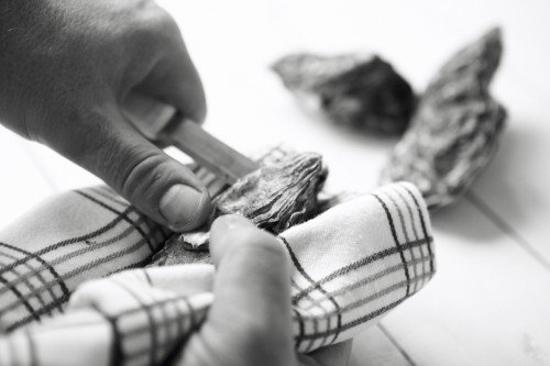 shucking oysters_19650685