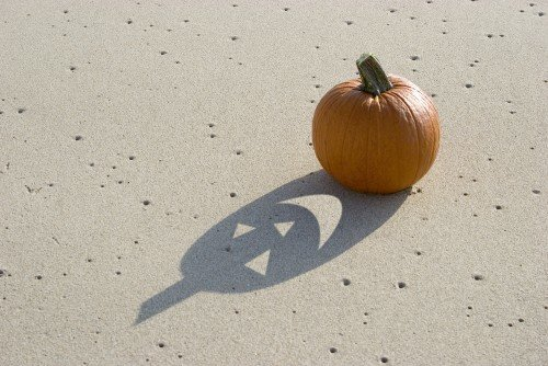 pumpkin in the sand_905476