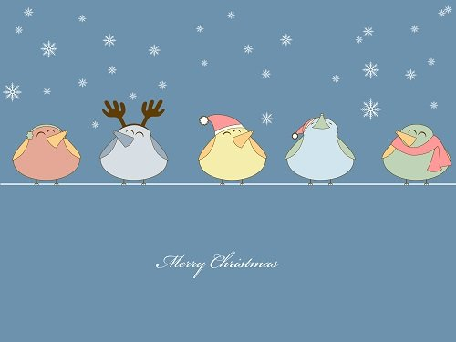 christmas birds on wire