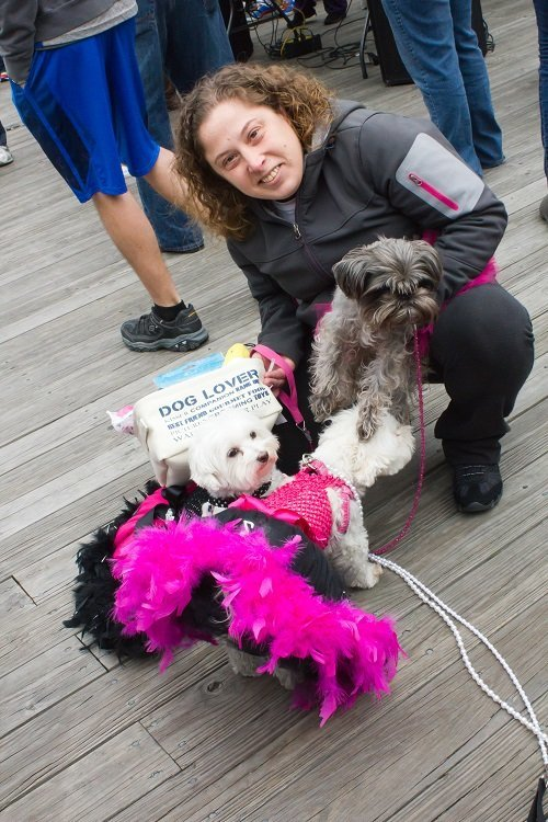 Amanda Knauff w Laverne, Shirely and Gidget (best costumes) Pet Threadz owner