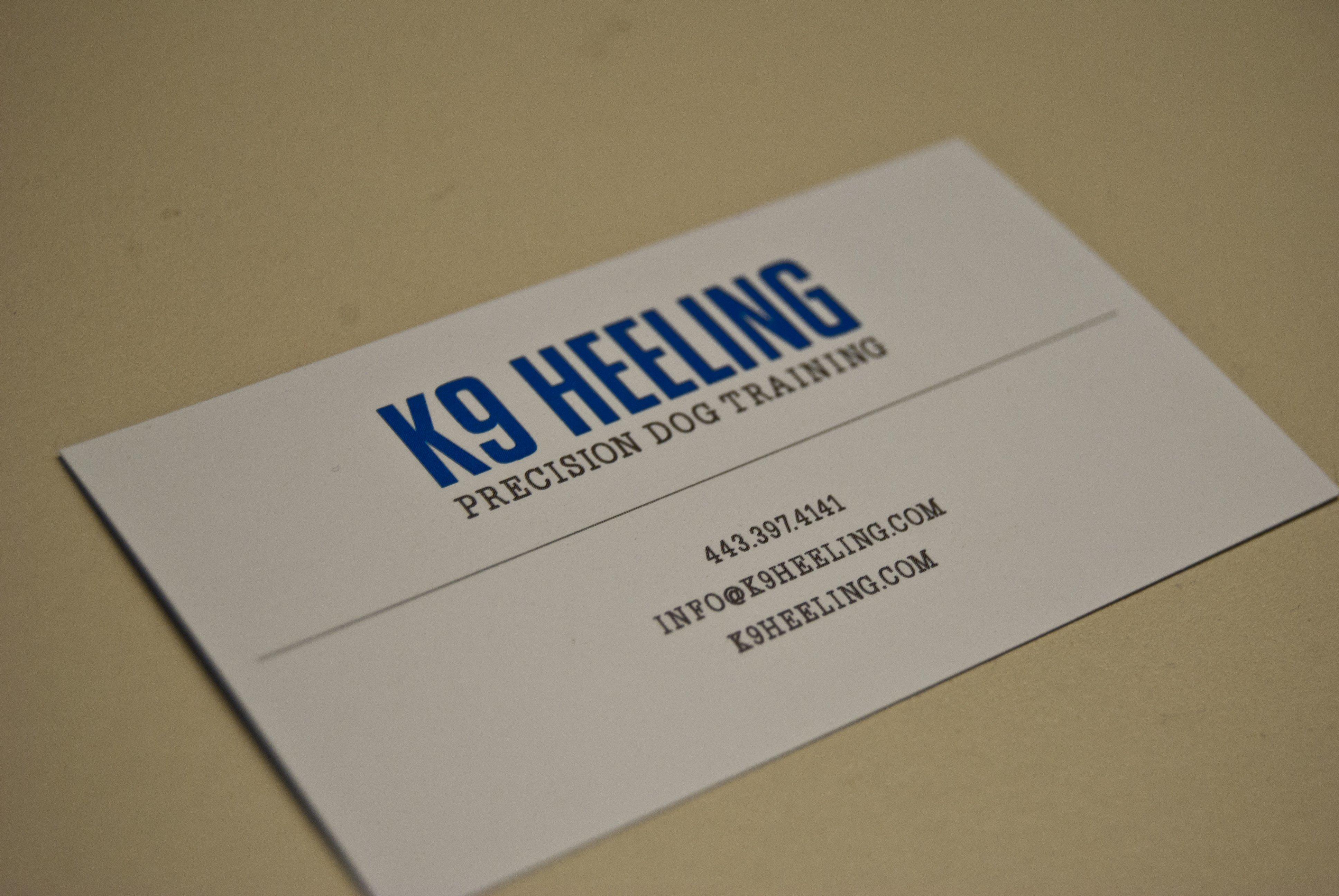 behind the scenes at k9 heeling