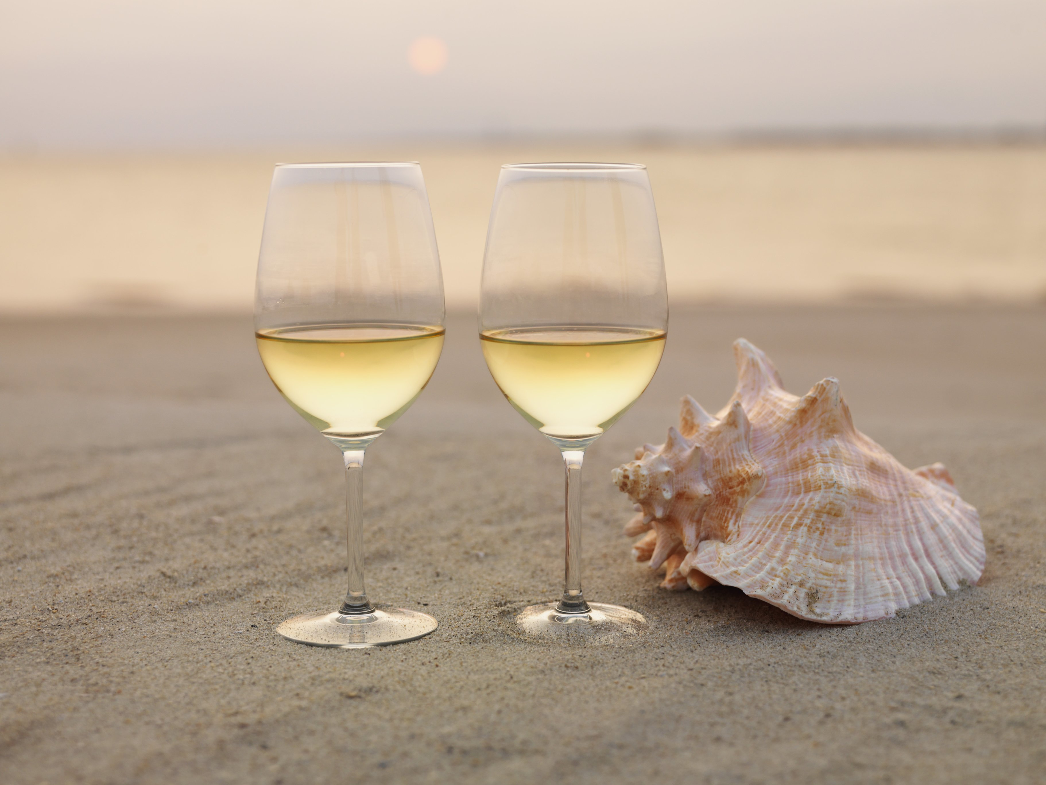 Champagne glasses and shell on beach