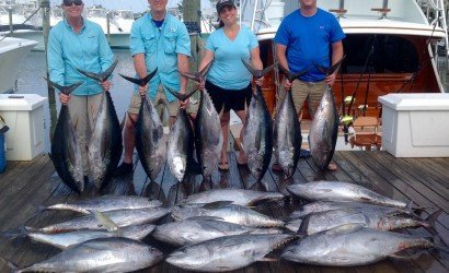 The yellowfin tuna showed up in the Washington Canyon in early September and in really good numbers. It wasn't rare for boats to catch a limit with some fish pushing 70 pounds. Then the wind blew.