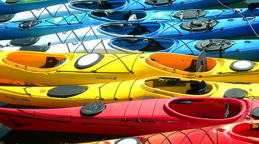 Paddle Poker Run on Wicomico Creek