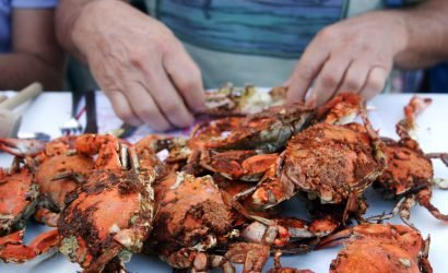 person eating steamed crabs Clam Bake