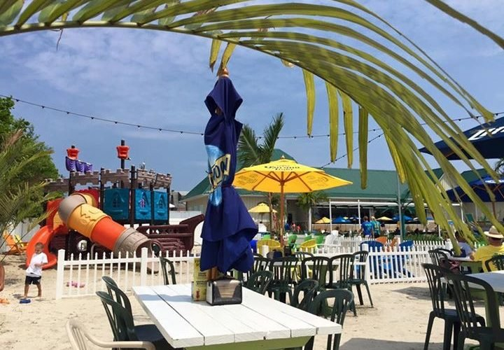 de lazy lizard playground kid friendly restaurants in ocean city