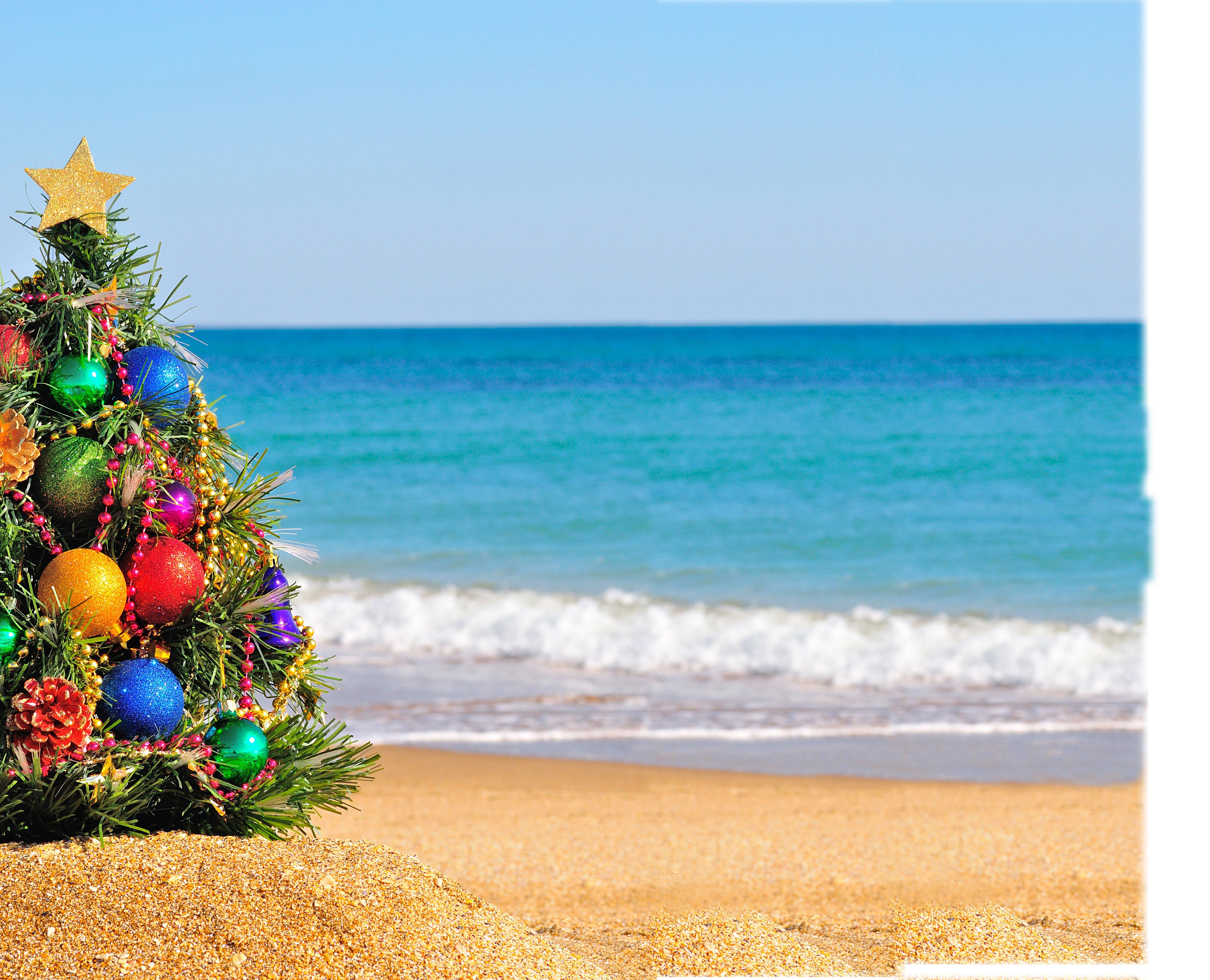 christmas tree on beach 120790171 - Beach Christmas Tree