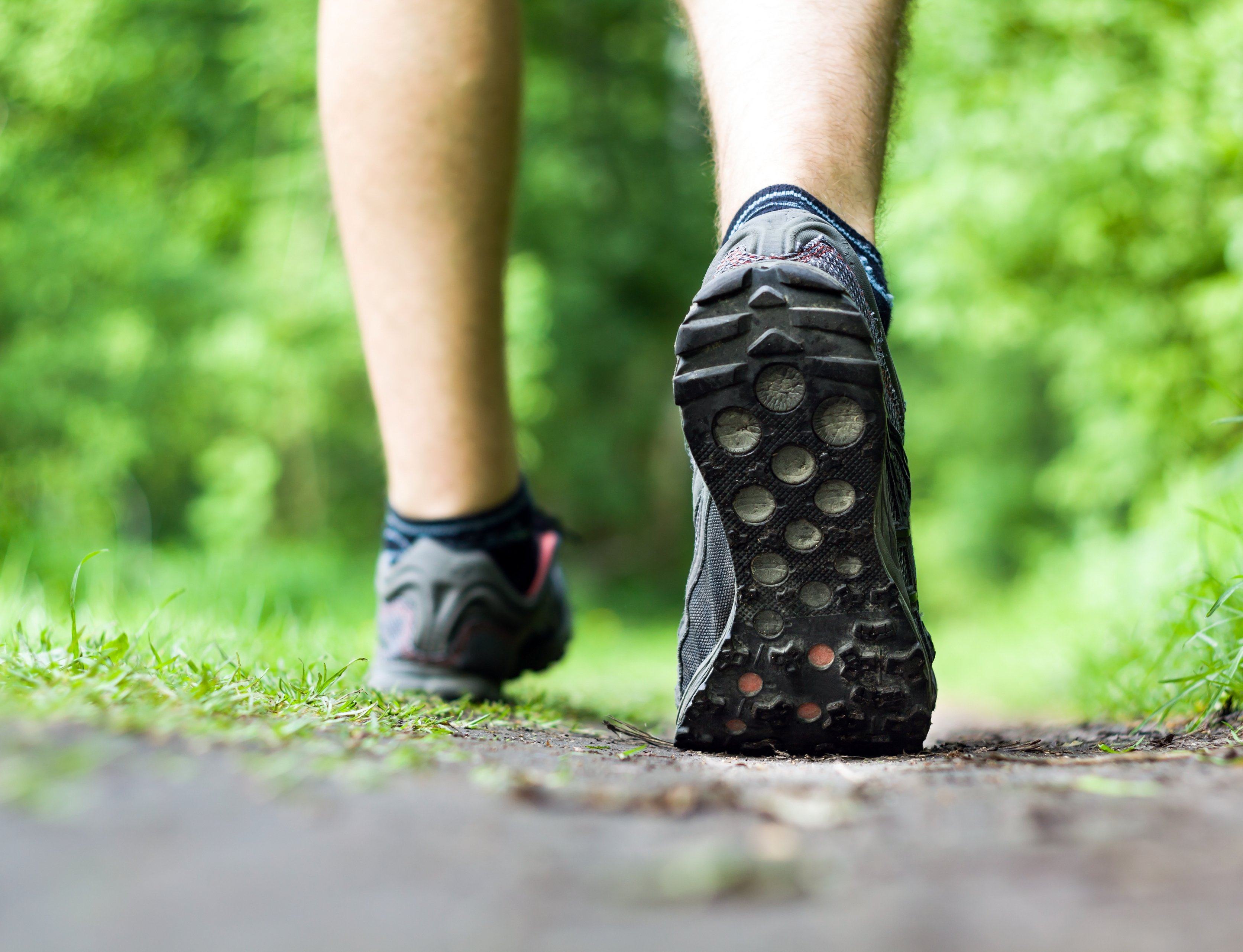 Man walking or running on trail in forest summer nature outdoors, sport shoes and exercising on footpath while hiking on delmarva